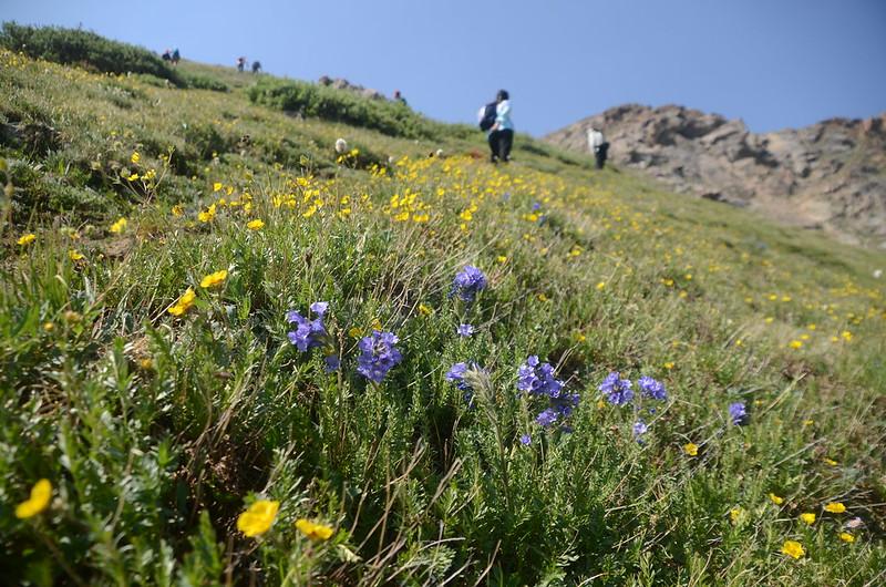 Butler Gulch Trail Hike (72)
