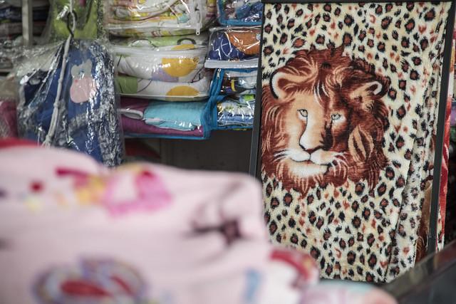 Galería: Animales Salvajes - Cobijeros Bronx - #El MejorAnguloDelBronx