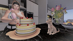 Baked a cake for my Sis Layla for her housewarming <3