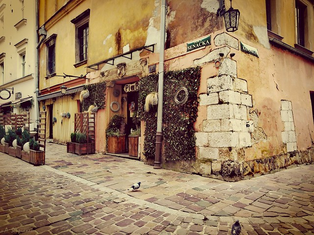 Magic Café - Old Town in Krakow