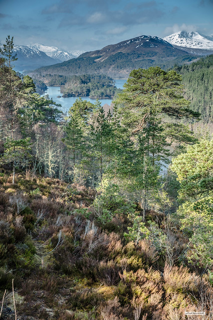The sumptuous glory that is Glen Affric at sunrise, in Spring, Inverness-shire, North-West Highlands, Scotland.
