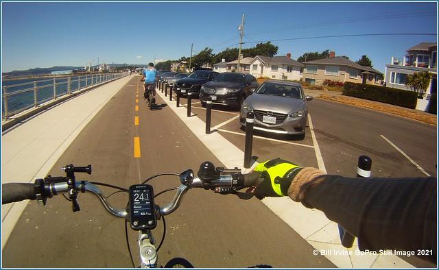 Dallas Road Bike Lane