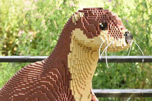 lego at london wetlands centre