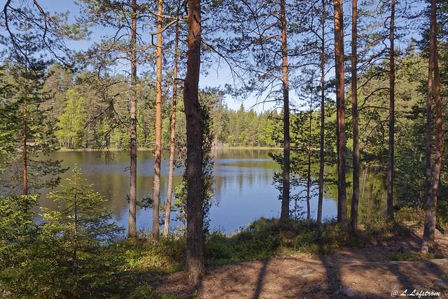 Valkialampi lake