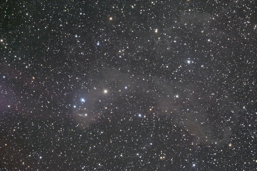 LBN 442 - Gecko Nebula