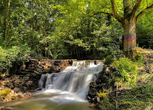 9959 - Waterfall