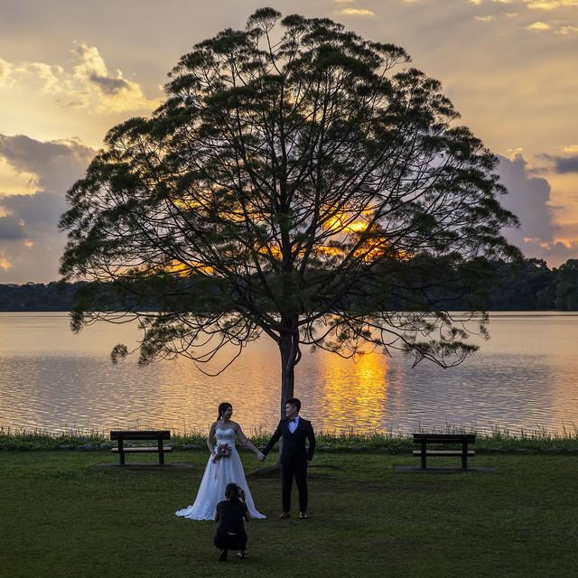 Wedding Photography in Upper Seletar Reservoir