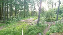 Hylliåsen, Spydeberg - Taken on July 2, 2021