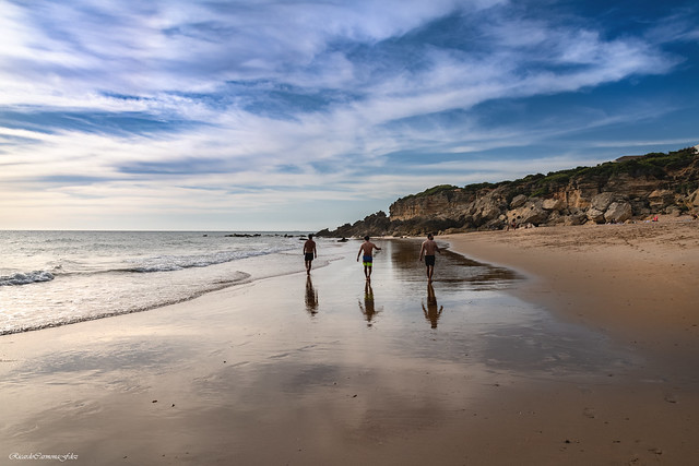 A walk along the shore - Un paseo por la orilla