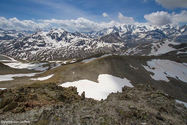 Bernina area