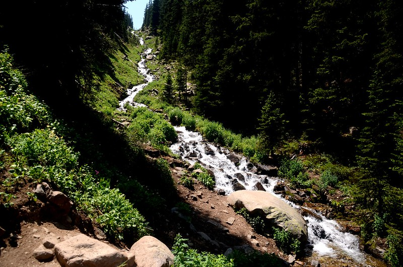 Cascading water along the trail (15)