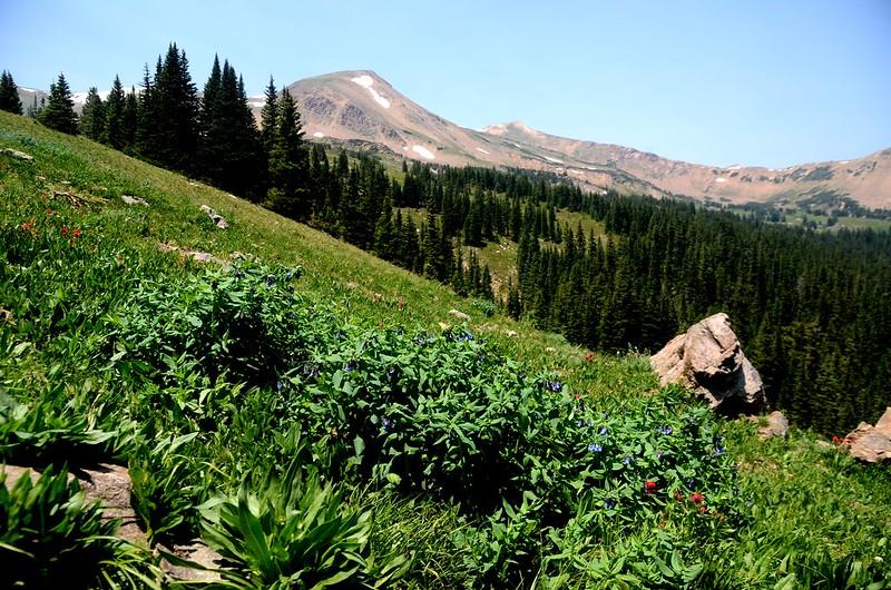 Butler Gulch Trail Hike (215)