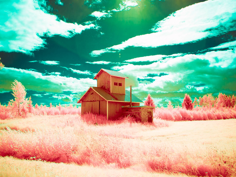 Infrared of the day 51