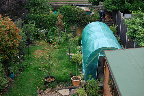 Looking Down on the Back Garden - July 2021