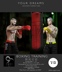 {YD} Boxing Training