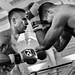 Fight Club - white collar boxing