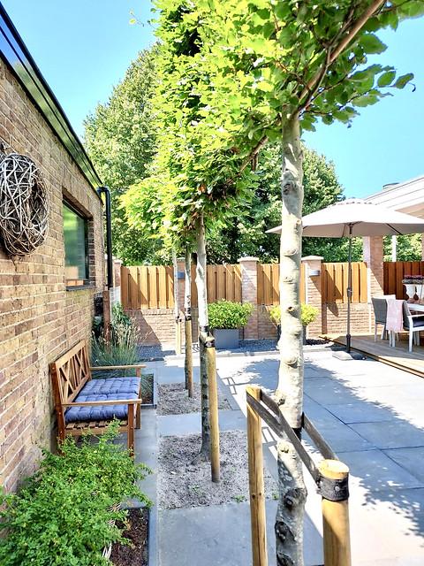 Leibomen landelijke terras tuinbankje met kussens