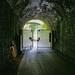 L2021_2449 - Wye Valley Railway Greenway - Tidenham Tunnel