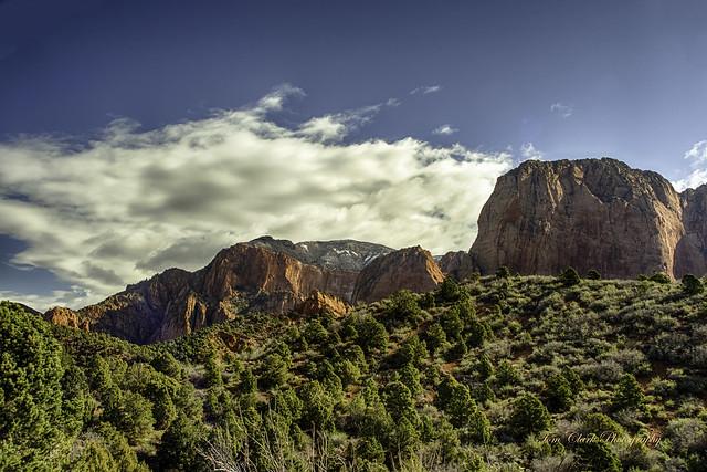 mountain view in Kolab Canyon - Zion NP