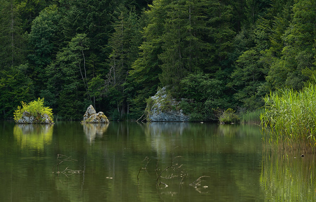 Berglsteiner See - Kramsach, Tirol