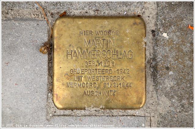 Martin Hammerschlag