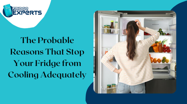 The Probable Reasons That Stop Your Fridge from Cooling Adequately