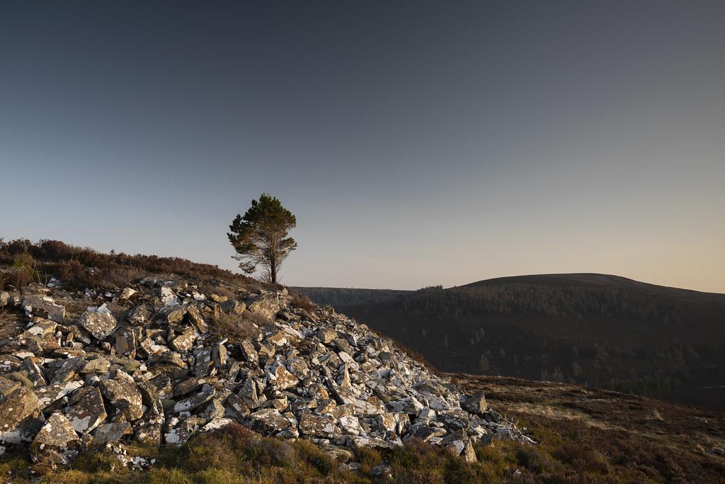 lone tree, correen hills