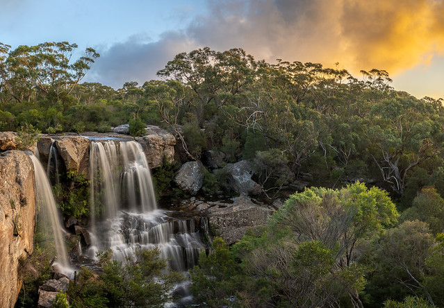 Maddens Falls in the golden hour