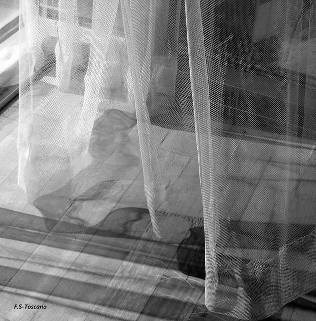 Brisa y visillos. Air and curtain.