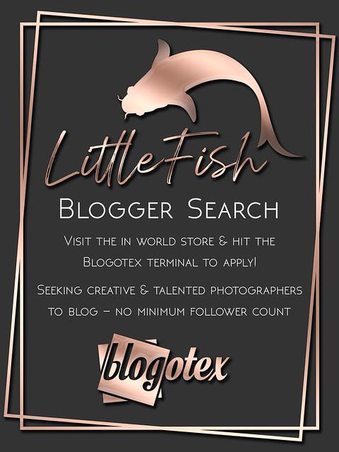 LF Blogger Search