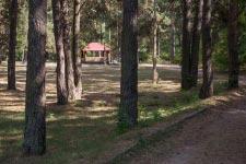 Территория Санатория Берестье летом - прогулочные дорожки