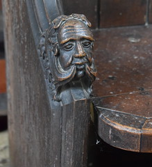 green man? or muttonchop whiskers? (19th Century)