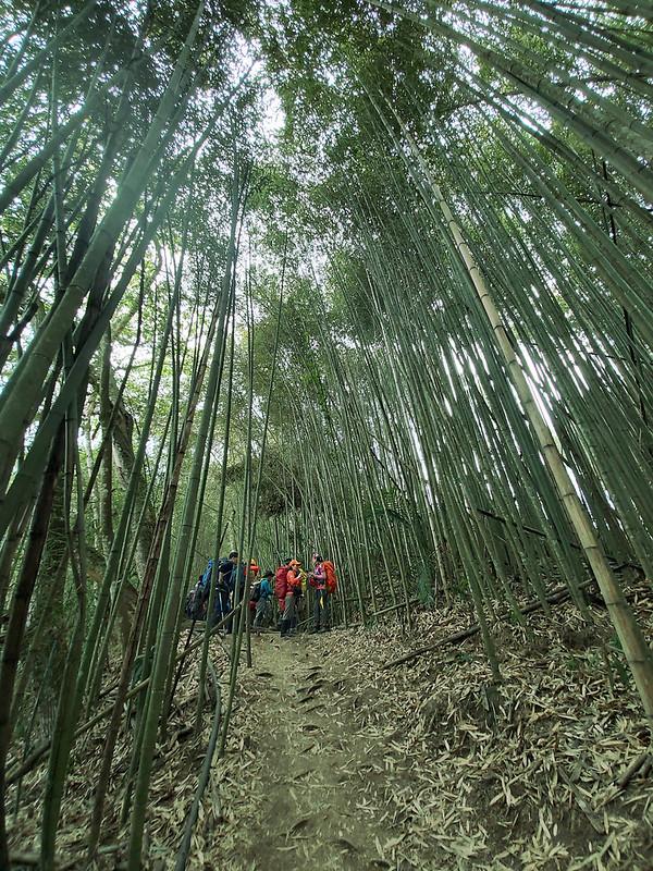 Hunters Trail in Wangxiang Nantou