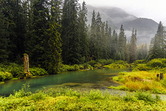 Fish Creek Wildlife Observation Site - Tongass National Forest, Alaska.