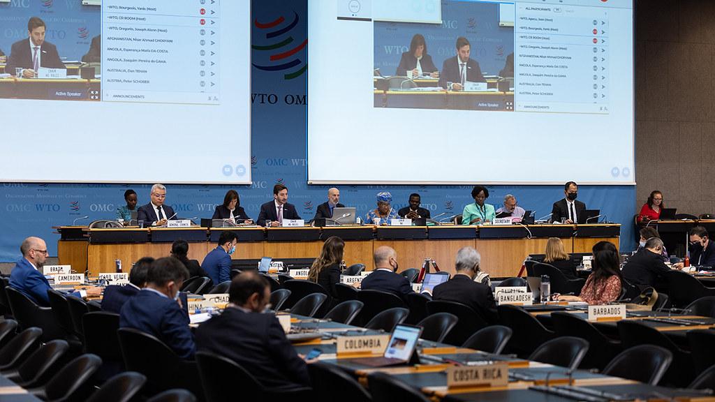 世界貿易組織於7月15日展開新一輪的漁業補貼談判