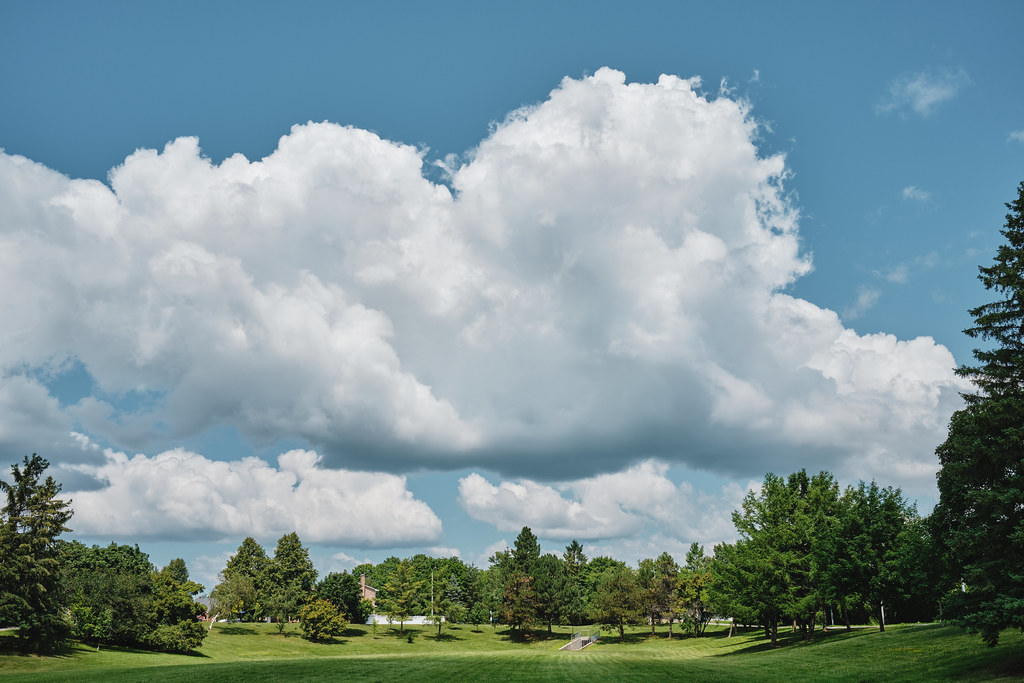 202/365 : Poofy clouds