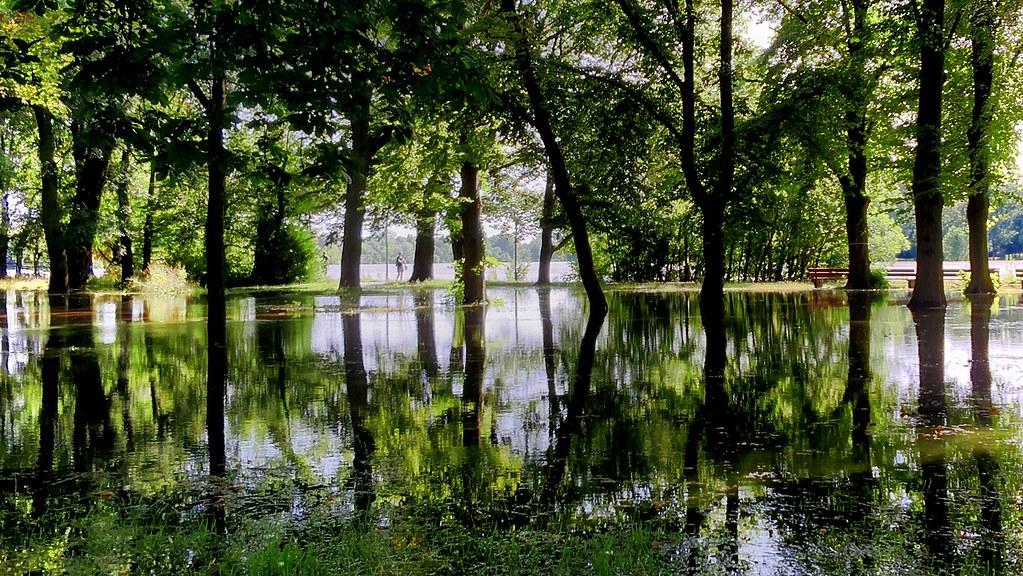 Hochwasser – Mikado