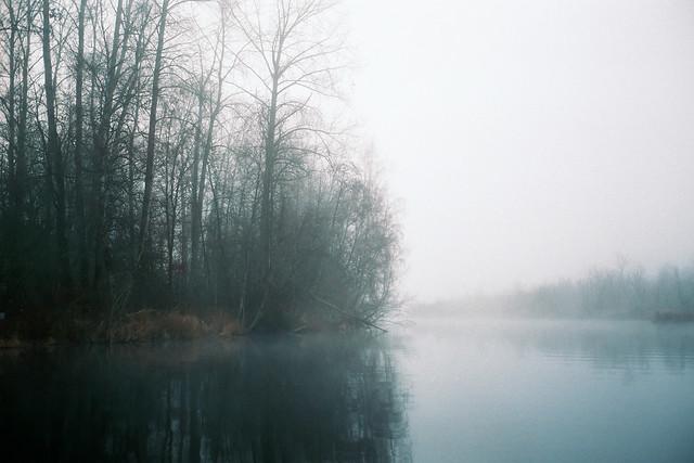 Sammamish River Mornings
