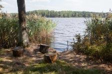 Территория Санатория Берестье летом - живописный вид на Белое озеро