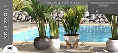 Soul2Soul. Penzance Plants Set at Shiny Shabby event