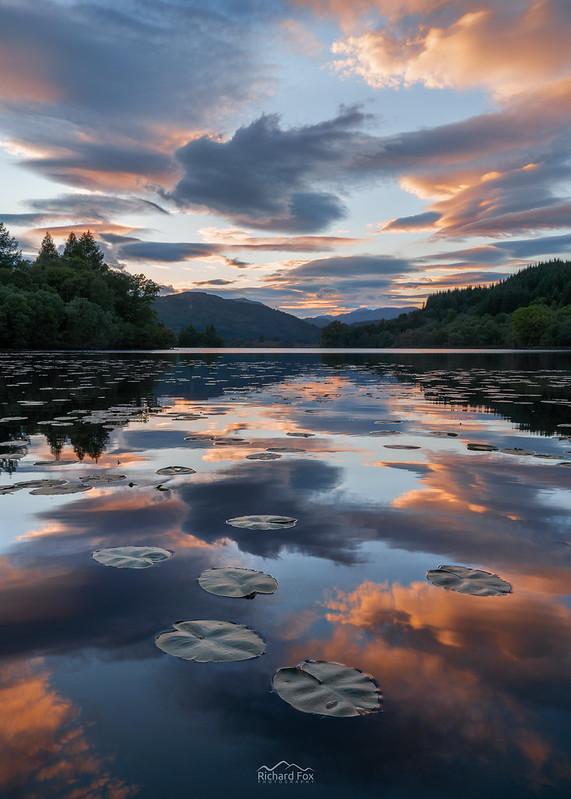 Lenticular Reflections