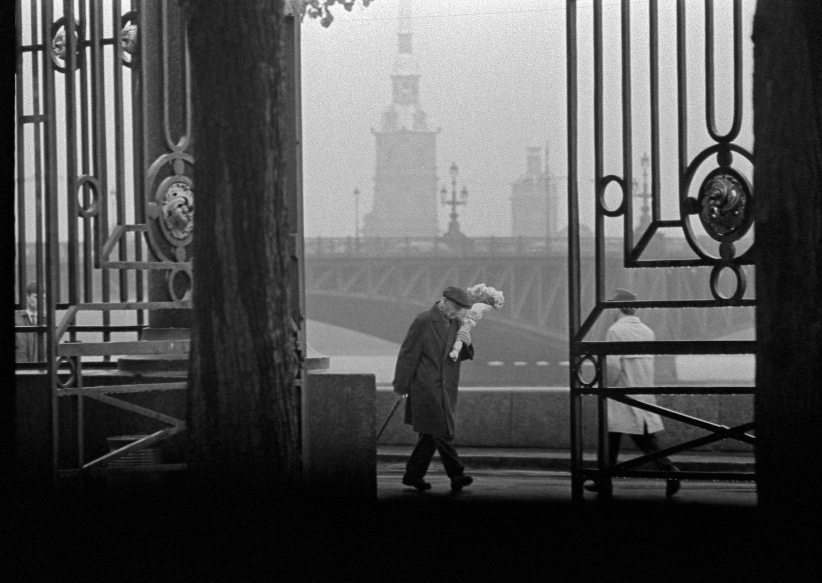 1964. У Летнего сада. Цветы запоздалые