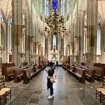 'Deus sive Natura' Domkerk Installatie