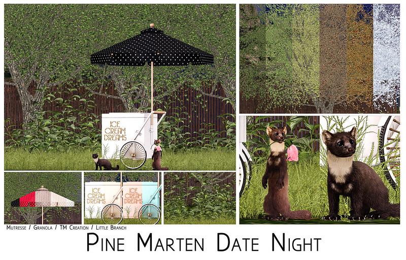 Pine Marten Date Night