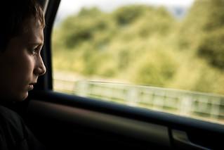 22.07.2021 | Прибытие мощей благоверного князя Александра Невского в Боровичи, Окуловку, Крестцы
