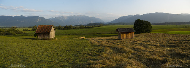 Summer evening at Murnauer Moos.