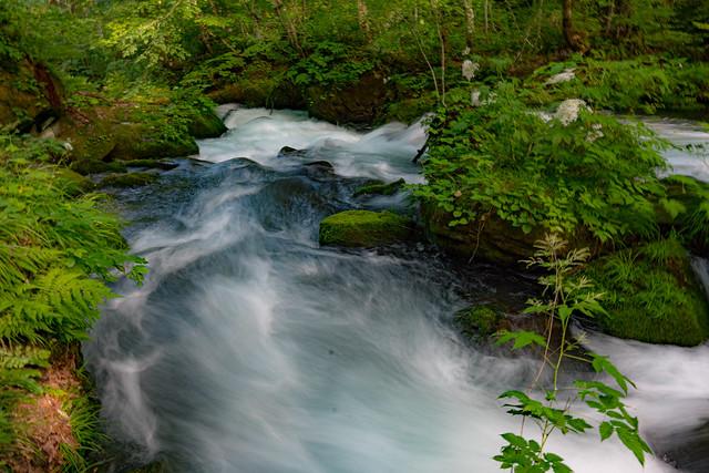 Stream of Assure