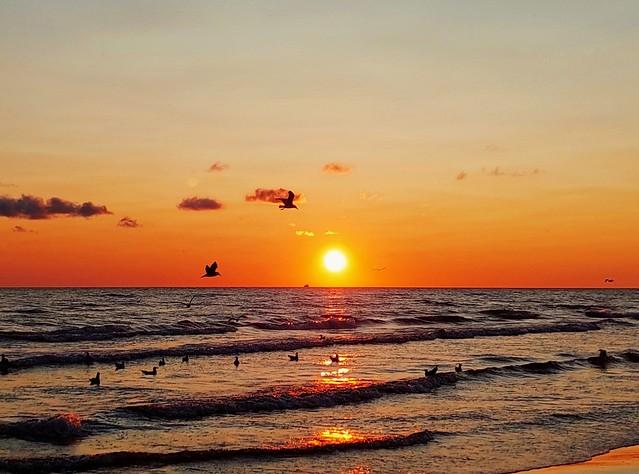 Sunset (Jul 21, 2021)