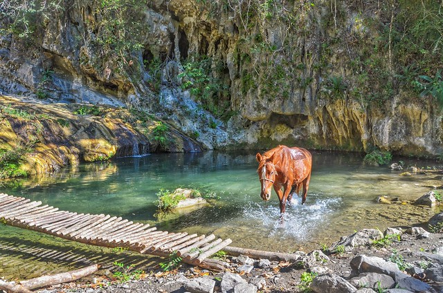 Horse at waterfall. Trinidad, Cuba