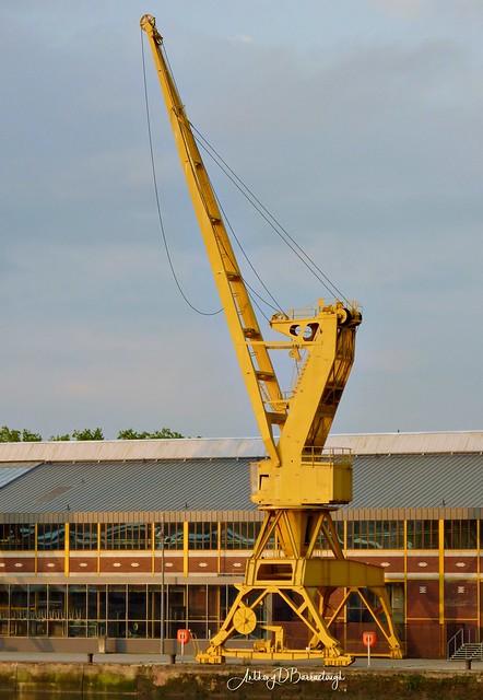 Seine Yellow Crane 903-1